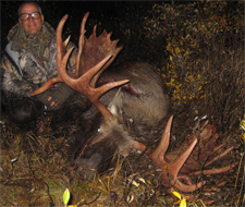 Big drop-tine bull taken from spike camp during rut
